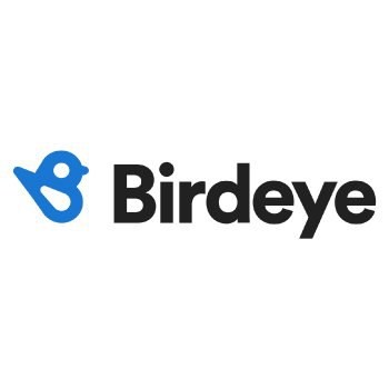 Birdeye-Logo
